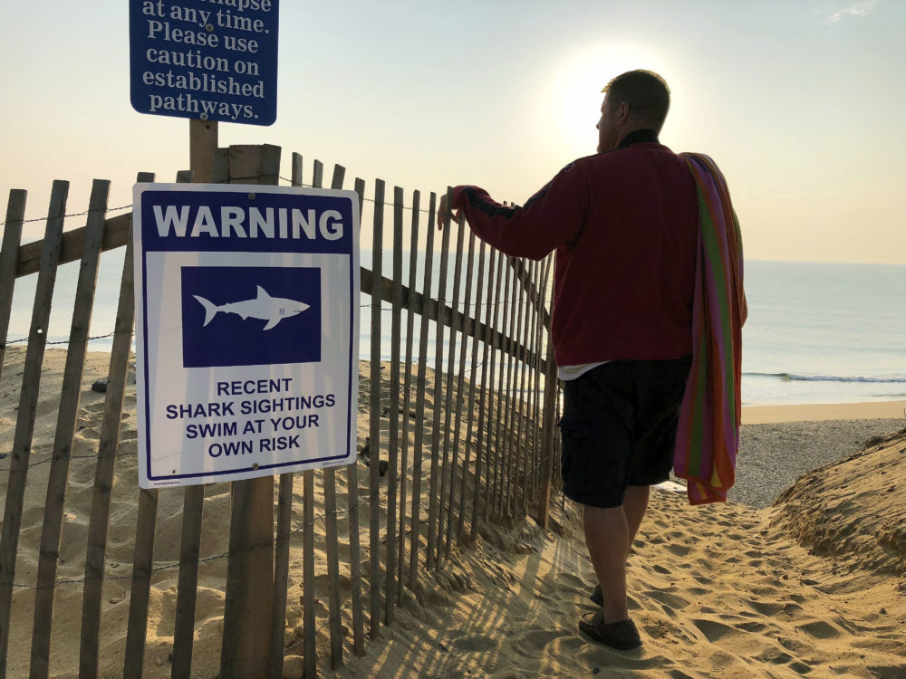 In this Aug. 16, file photo, Steve McFadden, 49, of Plattsburgh, N.Y., gazes at Long Nook Beach in Truro, Mass., on Cape Cod. (William J. Kole/AP)