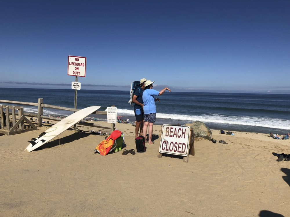 Two people look out at the shore after a reported shark attack at Newcomb Hollow Beach in Wellfleet, Mass., Saturday, Sept. 15, 2018. (Susan Haigh/AP)