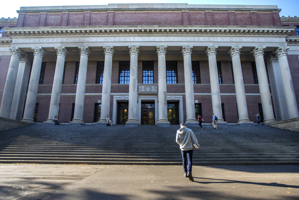 Students walk in and out of the Widener Library in Harvard Yard. (Jesse Costa/WBUR)