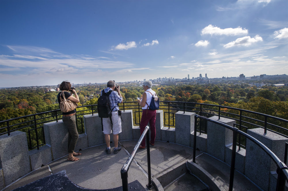 Visitors of Mount Auburn Cemetery stand atop Washington Tower while taking photographs of the Boston skyline. (Jesse Costa/WBUR)