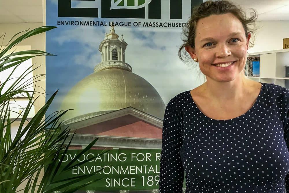 Elizabeth Henry is president of The Environmental League of Massachusetts. (Bruce Gellerman/WBUR)