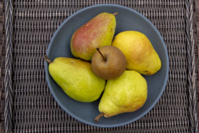 Assorted pears. (Jesse Costa/WBUR)