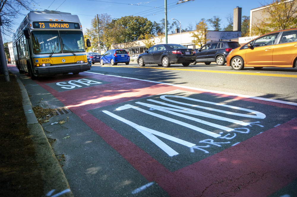 An MBTA 73 bus bound for Harvard Square travels through the red painted lane restricted for buses and bicycles on Mt. Auburn Street at the Cambridge/Watertown line. (Jesse Costa/WBUR)