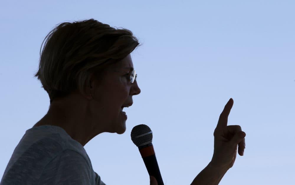 Sen. Elizabeth Warren, D-Mass., addresses an audience at Belkin Family Lookout Farm during a town hall event, Sunday, July 8, 2018, in Natick, Mass. (Steven Senne/AP)