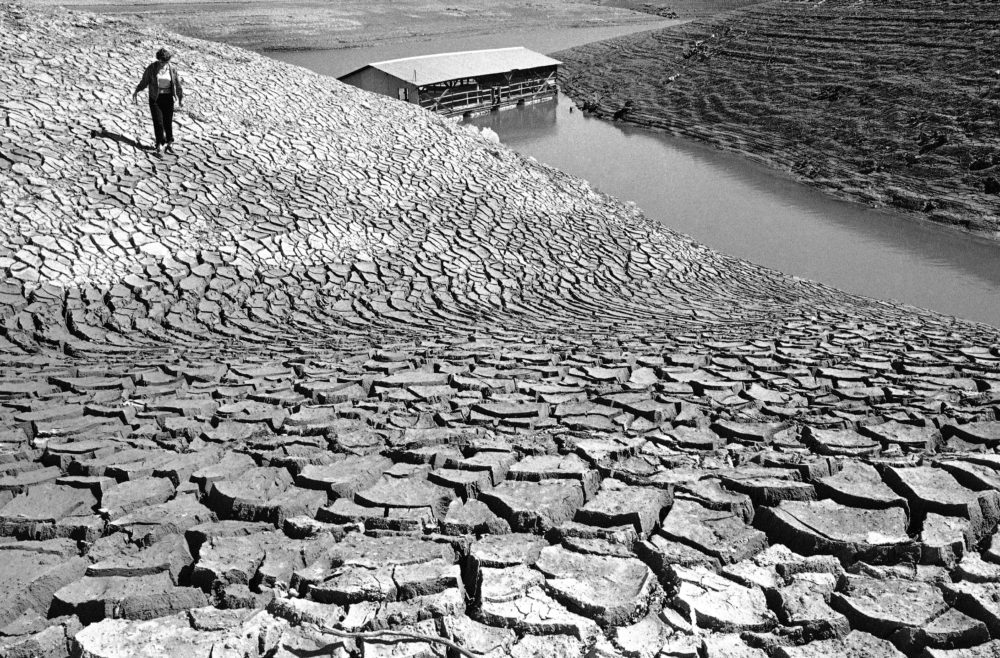 Mud, left baking in the sun by receding water at Pardee Reservoir near Jackson, Calif., March 9, 1977, cracked into surrealistic patterns. (Walter Zeboski/AP)