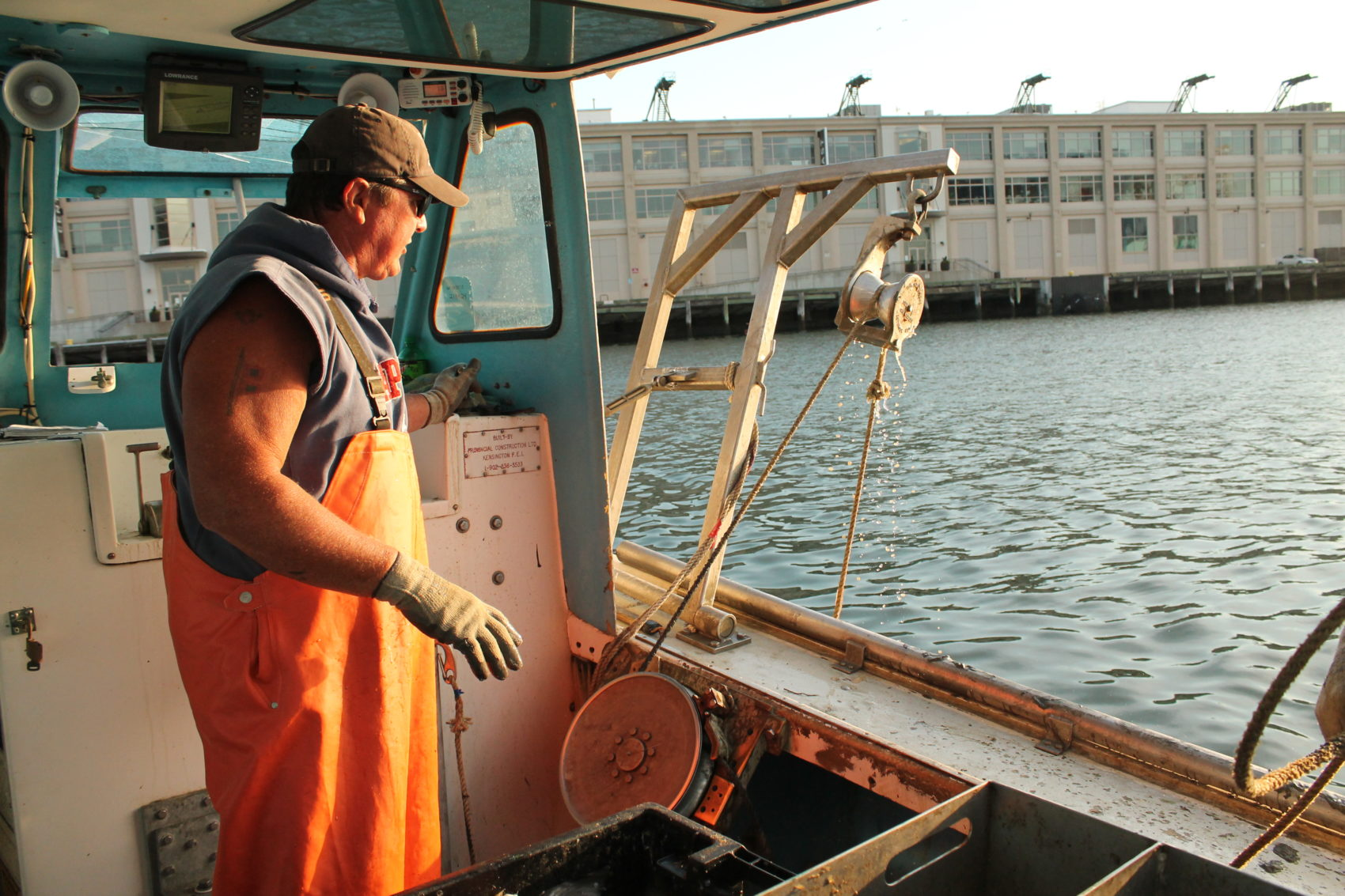 Lobsterman Steve Holler hoists his lobster traps out of Boston Harbor and into his boat on a July morning. (Hannah Chanatary/WBUR)