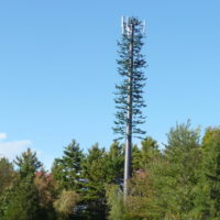 A traditional cell phone tower disguised as a tree. (Saycheeeeeese)/Creative Commons)