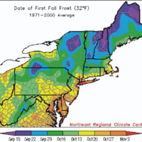 Although it is warm this week, the average date of first frost is nearing many areas. (Courtesy Northeast Regional Climate Center)