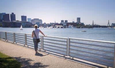 A woman looks out on Boston Harbor from Lo Presti Park in East Boston. (Jesse Costa/WBUR)