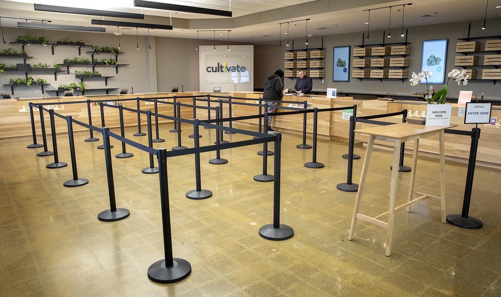 A look inside Cultivate, in Leicester, which will open to recreational marijuana sales (Robin Lubbock/WBUR)