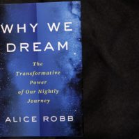 """Why We Dream — The Transformative Power Of Our Nightly Journey,"" by Alice Robb. (Robin Lubbock/WBUR)"