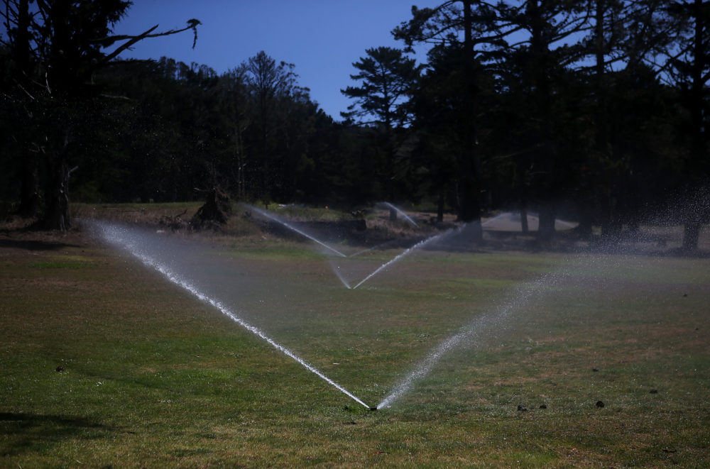 Sprinklers water grass on a fairway at a golf course in San Francisco. (Justin Sullivan/Getty Images)