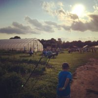 Waltham Fields Community Farm in Waltham, Mass. (Courtesy of Michele Kosboth)
