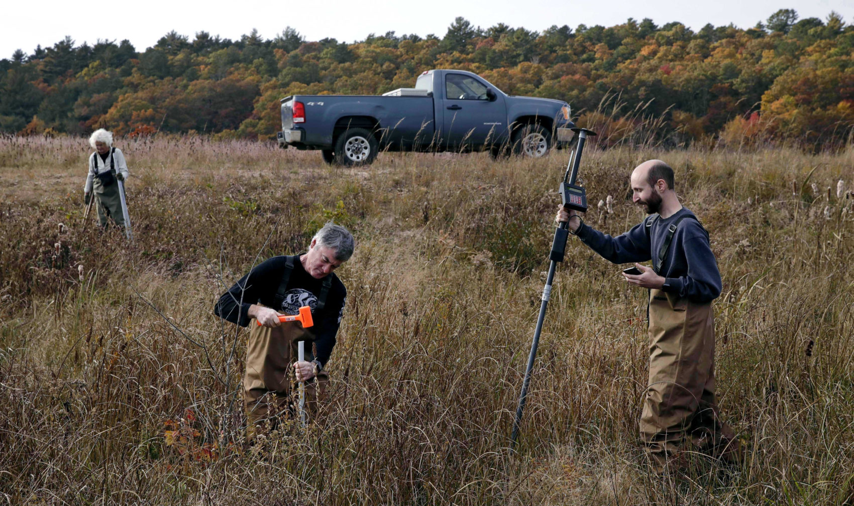 In this Thursday Nov. 1, 2018 photo, Joe Paradiso, Director of the Responsive Environment group at the MIT Media Lab, center, drives a support post for a sensor unit as Brian Mayton, a research assistant at the Responsive Environment group, right, prepares to map the device's global position at a marshland in Plymouth, Mass., which is equipped with wireless sensors, cameras and microphones to create a virtual reality world inspired by nature's rhythms. Researchers at the Massachusetts Institute of Technology hope that by live-streaming data, sights and sounds at the Tidmarsh Wildlife Sanctuary, they can help scientists understand wildlife restoration techniques and let other virtual visitors experience nature remotely. At rear left is Glorianna Davenport, president of the Living Observatory and co-founder of the MIT Media Lab. (Charles Krupa/AP)