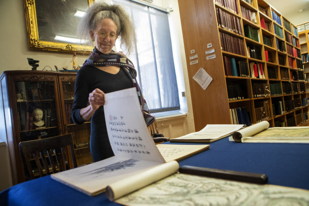 MFA curator Nancy Berliner stands over a 17th-century Chinese scroll newly given to the museum. (Jesse Costa/WBUR)