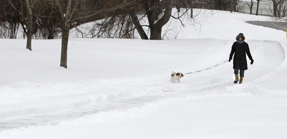 Carol Poh walks with her dog, Lucas, on a four mile walk in the bitter cold Tuesday, Feb. 1, 2011, in Cleveland. (Tony Dejak/AP)