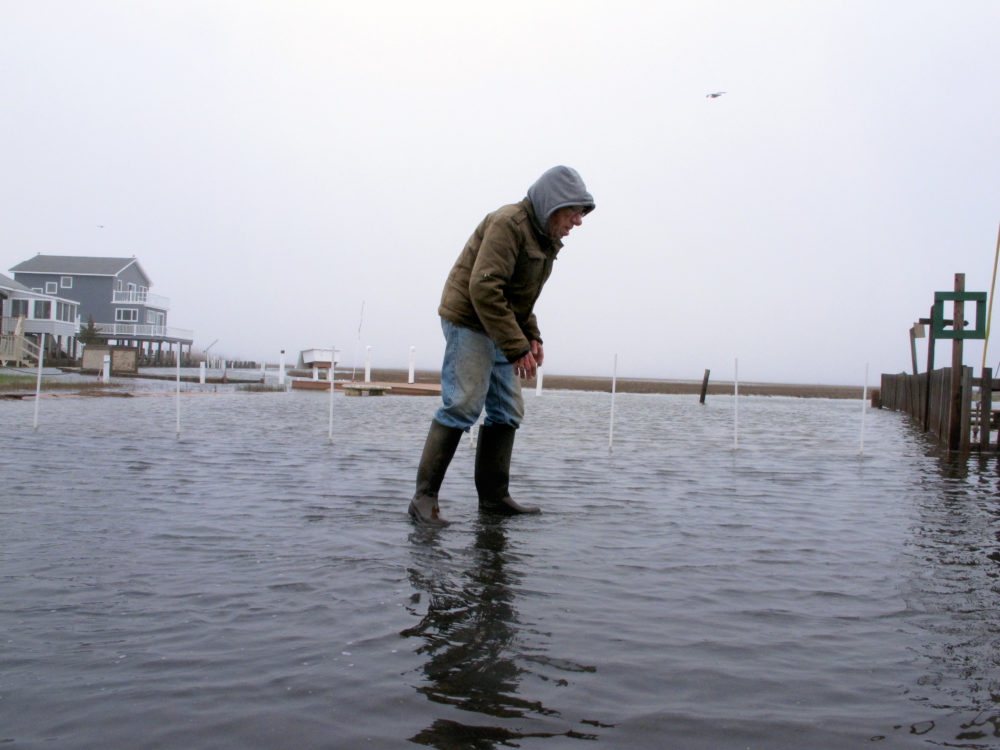 In this April 26, 2017, photo Jim O'Neill walks through a flooded street in front of his home in Manahawkin N.J., after a moderate storm. He lives in a low-lying area near the Jersey shore, and is often affected by back bay flooding, a type of recurring nuisance flooding that's affecting millions of Americans. (AP Photo/Wayne Parry)