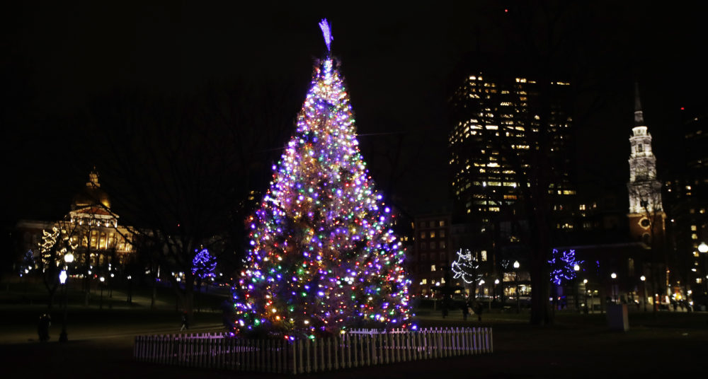 A Christmas tree stands illuminated on Boston Common, down Beacon Hill from the Statehouse, in Boston, Wednesday, Dec. 5, 2018. (AP Photo/Charles Krupa)