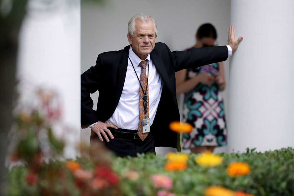 White House trade adviser Peter Navarro stands along the Rose Garden colonnade as he listens to a news conference between President Trump and Japanese Prime Minister Shinzo Abe at the White House June 7, 2018 in Washington, D.C. (Chip Somodevilla/Getty Images)