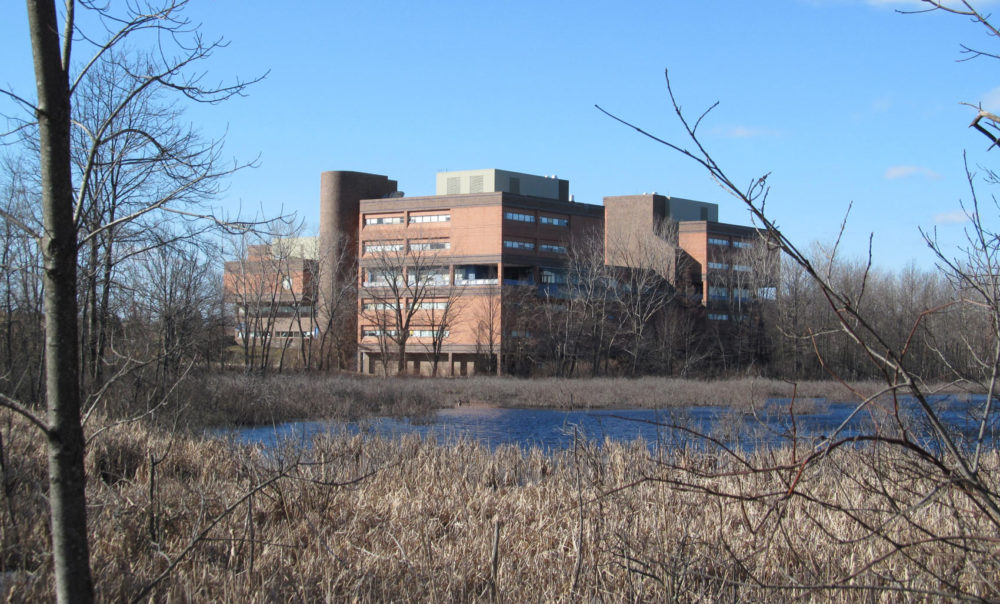 The West Roxbury Education Complex, seen from the VFW Parkway. (John Phelan/Wikimedia Commons)
