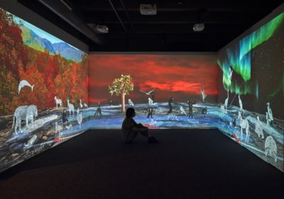 "An earlier piece by Allison Maria Rodriguez, ""Wish You Were Here: Greetings from the Galápagos"" installed at the Boston Children's Museum. (Courtesy Stewart Clements)"