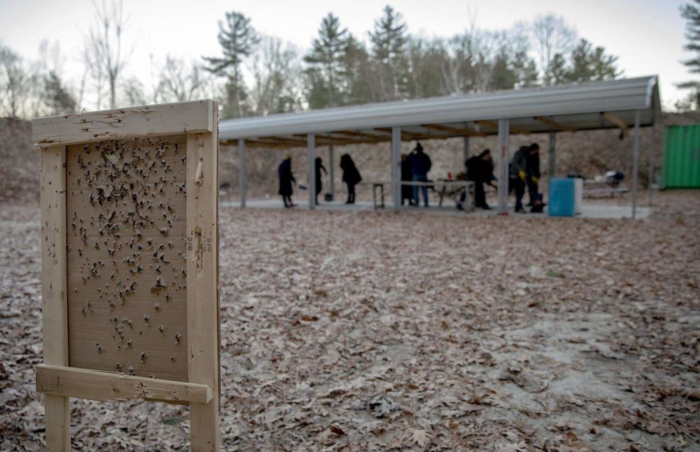 A tattered target stands at the end of a range at the Harvard Sportsmen's Club. (Robin Lubbock/WBUR)