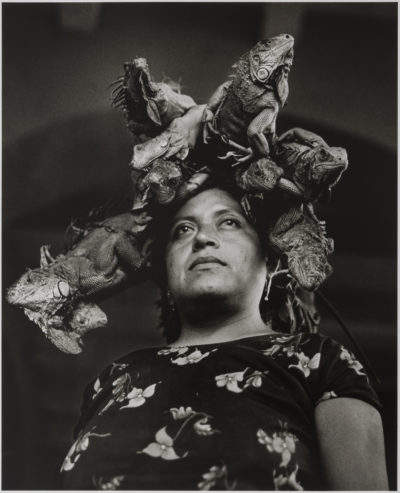 """Our Lady of the Iguanas"" by Graciela Iturbide (Courtesy Museum of Fine Arts)"
