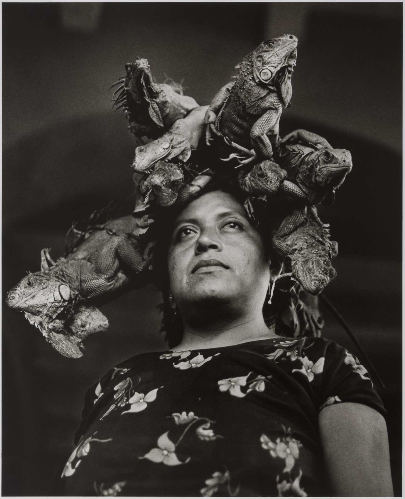 Our lady of the iguanas by graciela iturbide courtesy museum of fine arts
