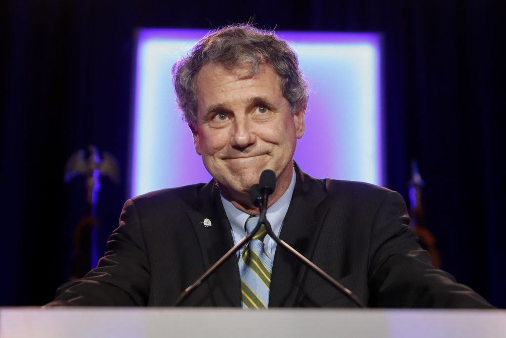 In this Nov. 6, 2018, file photo, Sen. Sherrod Brown, D-Ohio, speaks to supporters after winning re-election during the Democratic election night party in Columbus, Ohio. (John Minchillo/AP)