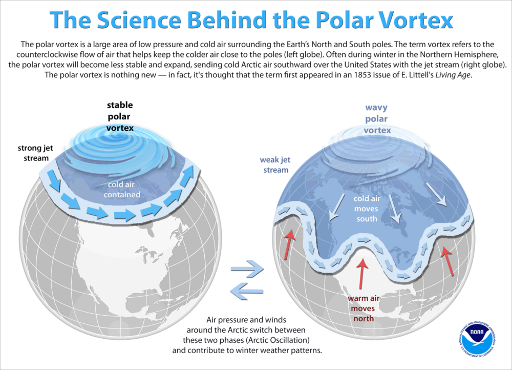 The polar vortex changes periodically, allowing very cold air to move south. (Courtesy of NOAA)