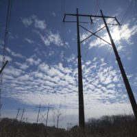Powerlines (Jesse Costa/WBUR)