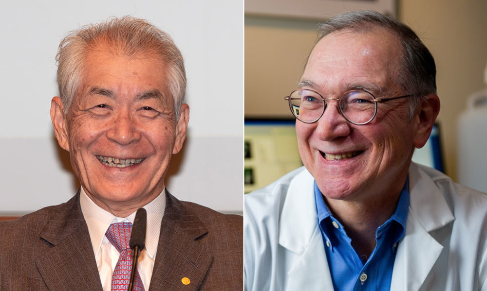 Tasuku Honjo, left, and Gordon Freeman (Courtesy (courtesy Bengt Nyman/Flickr and Dana-Farber Cancer Institute)