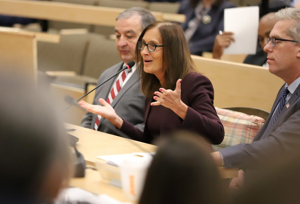 "Treasurer Deborah Goldberg told lawmakers that the state Lottery is ""fully capable of handling"" oversight of legal sports betting in Massachusetts. (Sam Doran/SHNS)"