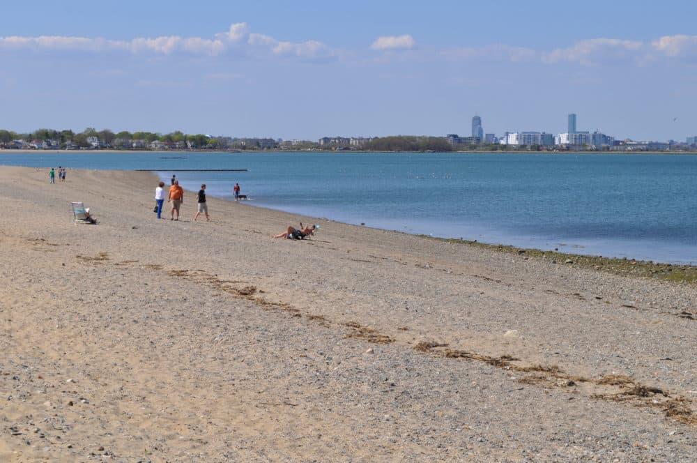 Wollaston Beach is shown in April 2012. (Eastern Nazarene College via Flickr)