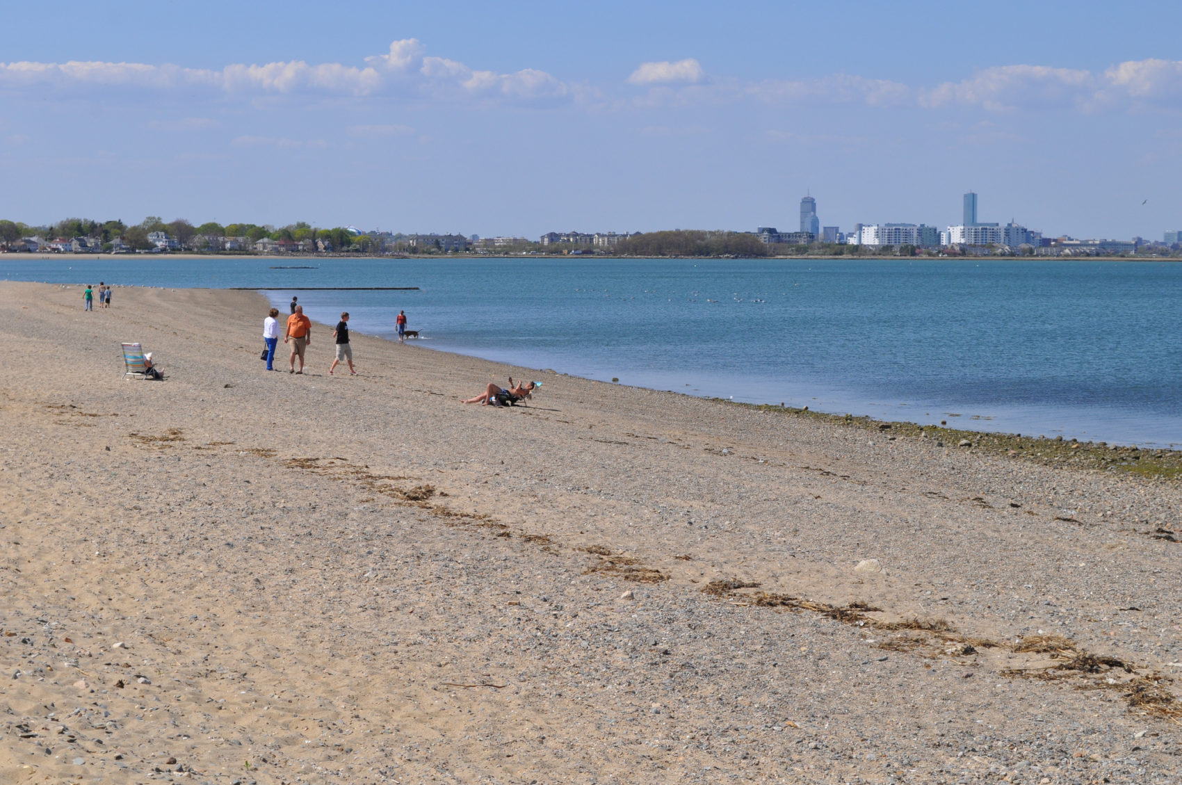 Three Boston Area Beaches Closed To Swimming Because Of Bacteria