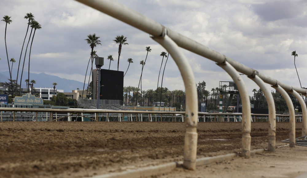 The home stretch race track is empty at Santa Anita Park in Arcadia, Calif., Thursday, March 7, 2019. (Damian Dovarganes/AP)
