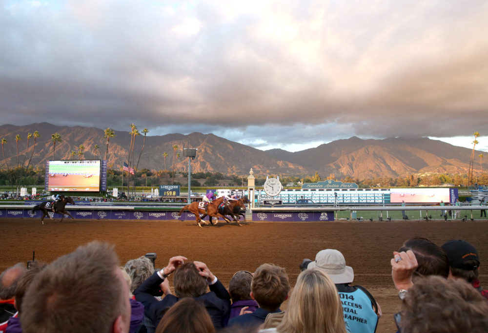 Attendees react as Bayern wins the classic at day two of the 2014 Breeders' Cup World Championships at Santa Anita Park in Arcadia, Calif. (Matt Sayles/AP)