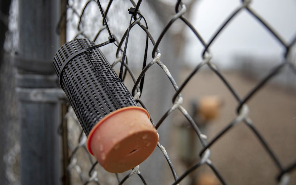 Thermoluminescent dosimeters (TLDs) placed on fences around the Pilgrim reactor building contain tags that monitor radiation. (Robin Lubbock/WBUR)