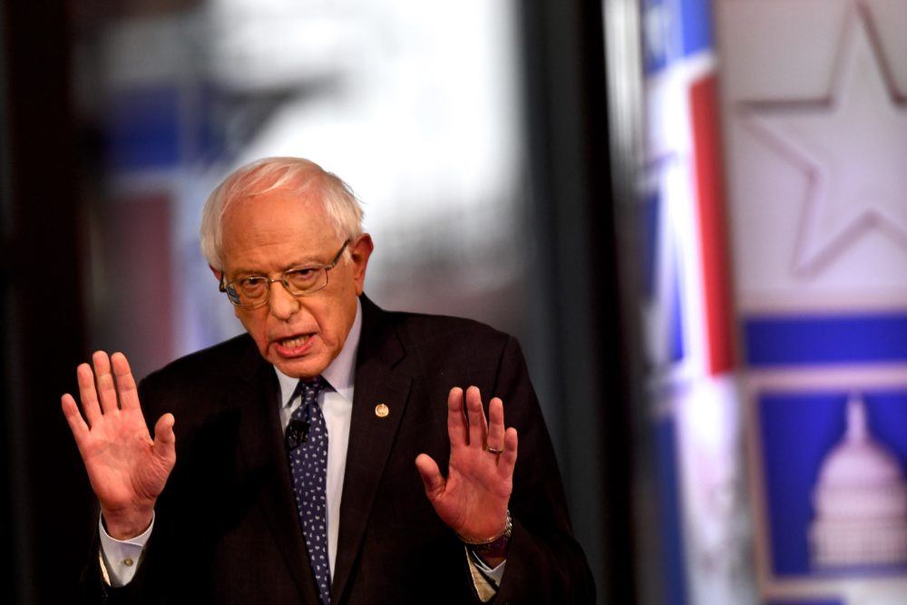 Democratic presidential candidate U.S. Sen. Bernie Sanders (I-Vt.) participates in a Fox News town hall on April 15, 2019, in Bethlehem, Penn. Sanders is running for president in a crowded field of Democratic contenders. (Mark Makela/Getty Images)