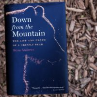 """Down from the Mountain: The Life and Death of a Grizzly Bear,"" by Bryce Andrews. (Robin Lubbock/WBUR)"