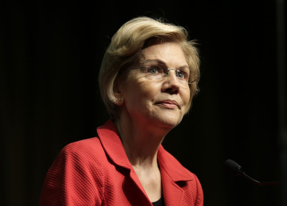 Sen. Elizabeth Warren, a candidate for the 2020 Democratic presidential nomination, speaks during the National Action Network Convention in New York. (Seth Wenig/AP)