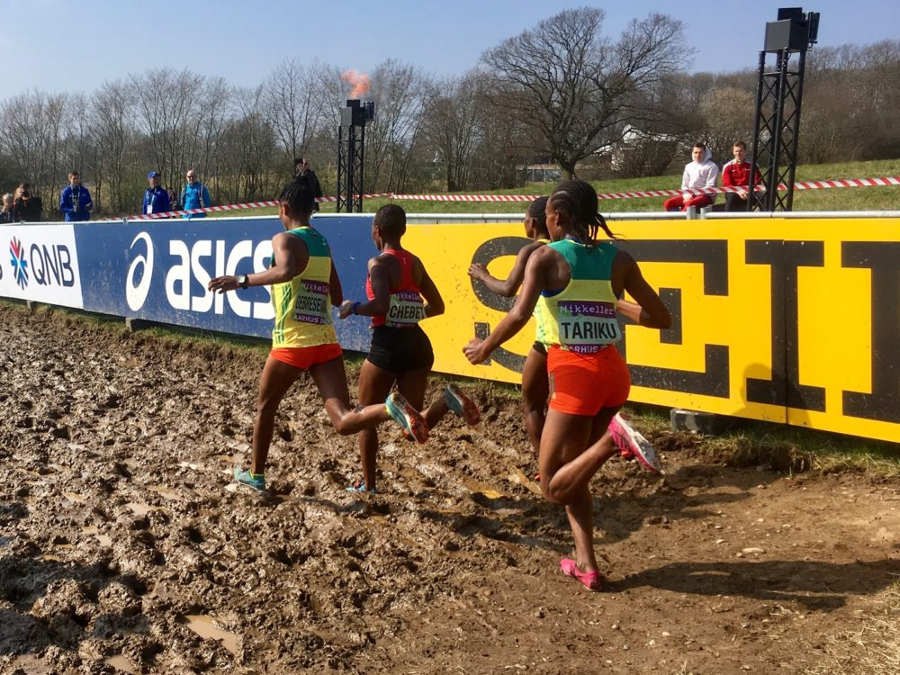Runners sprint through mud at the International Association of Athletics Federations World Cross Country Championship in Denmark. (Alex Ashlock/Here & Now)