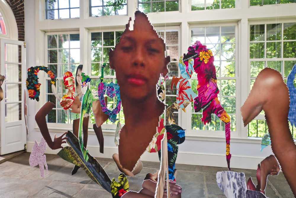 Joiri Minaya's #dominicanwomengooglesearch, pictured in 2016 at the Sunroom Project Space at Wave Hill in the Bronx, NY. (Courtesy Stefan Hagen)