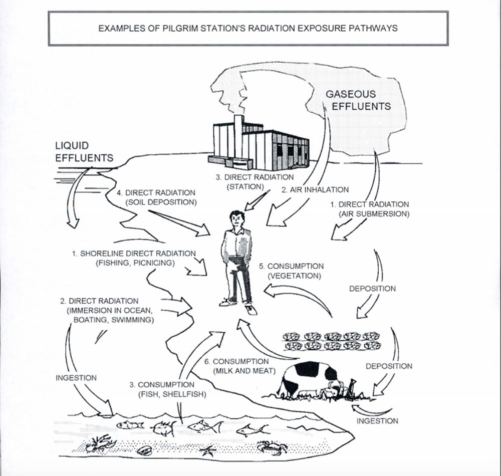 A graphic explaining radiation pathways. (Created by Entergy and submitted to the NRC)