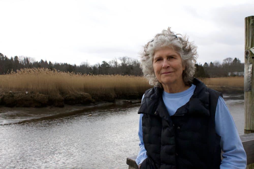 Pine duBois stands by the Jones River. (Miriam Wasser/WBUR)