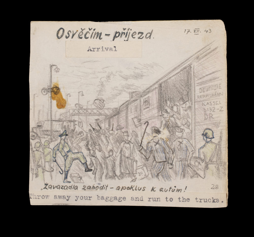 """Artist Alfred Kantor's depiction of arrival in Auschwitz: """"Throw away your baggage and run to the trucks."""" (Gift of Alfred Kantor, Museum of Jewish Heritage)"""
