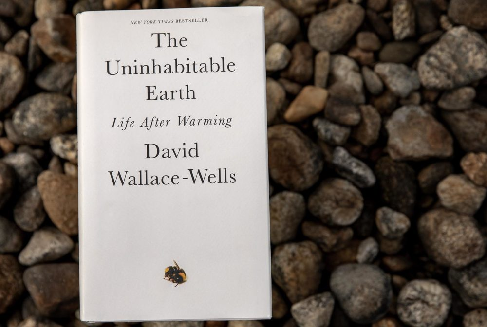 """The Uninhabitable Earth: Life After Warming,"" by David Wallace-Wells. (Robin Lubbock/WBUR)"