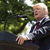 President Trump speaks on immigration in the Rose Garden at the White House on Thursday. (Andrew Harnik/AP)