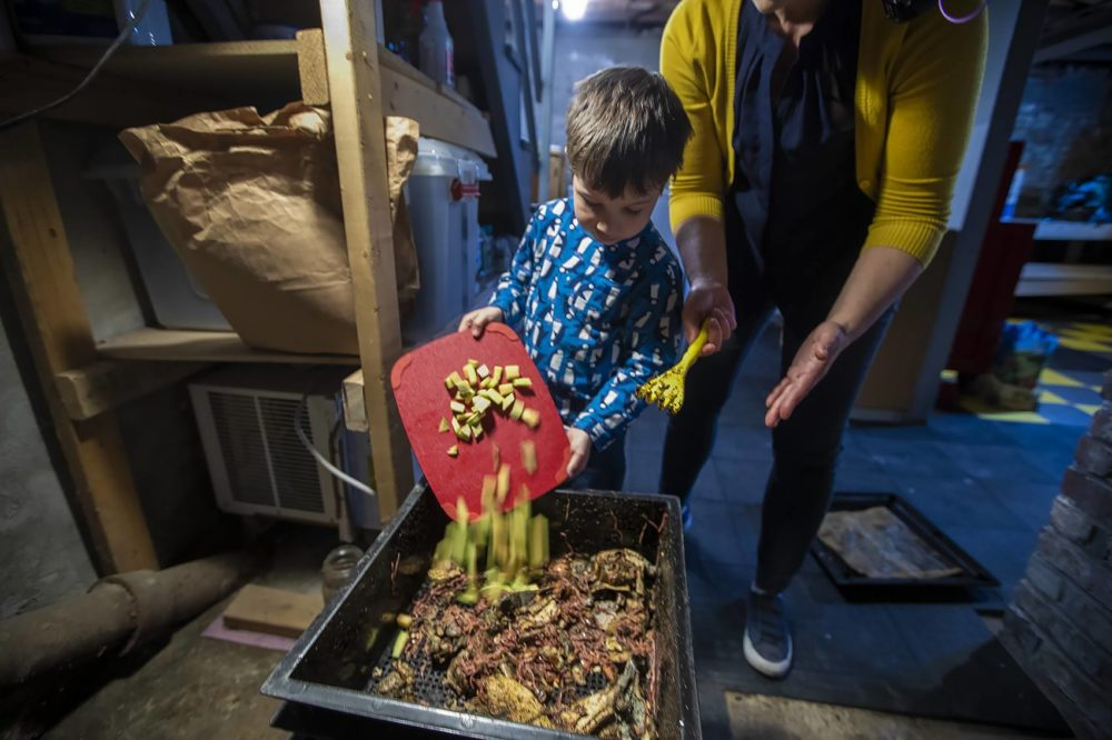 Ben drops a load of cubed cantaloupe peels into the worm composter in the basement. (Jesse Costa/WBUR)