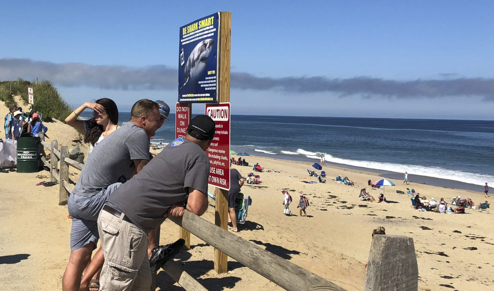 People look out at the beach after a shark attack at Newcomb Hollow Beach in Wellfleet on Sept. 15, 2018. (Susan Haigh/AP)